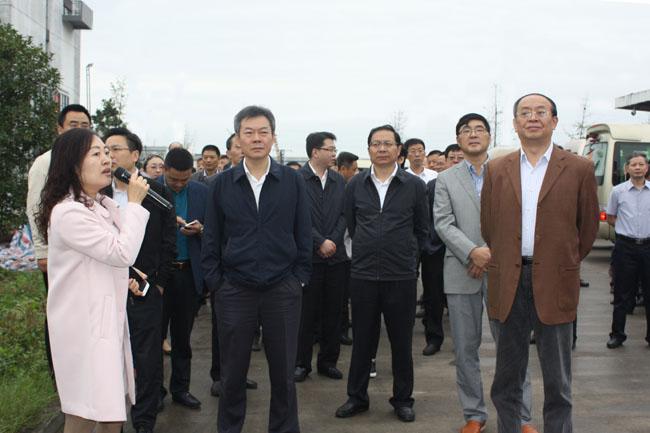 图为如东县委书记潘建华(前排中)等领导听取缪总汇报健桥物流项目